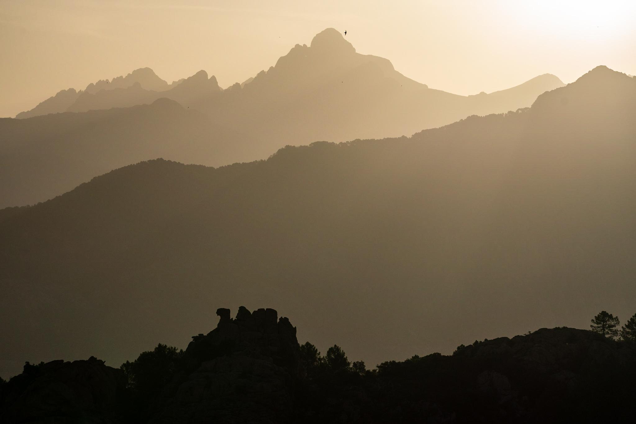 190613_Corsica_03910